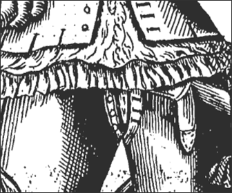 Picture of an Elizabethan Codpiece